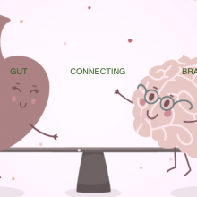 The Brain Gut Connection – What is it?